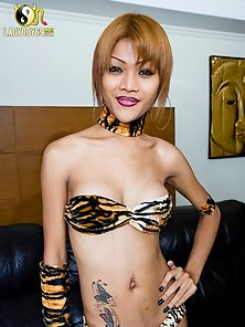 Charming Sexy Shemale King Removes Her All Dress One By One on Camera