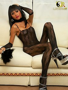 Classy Bawdy Shemale Flashed Nice Cock Sucking Activities on Couch