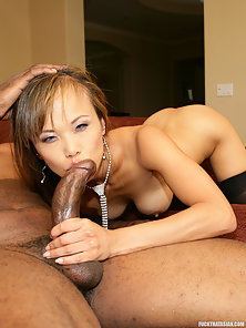 Stockings Babe Shaved Twat Black Cock Penetration Action