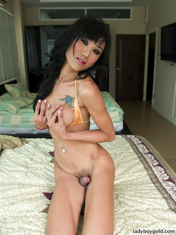 awesome shemale dick - Shinning Shemale Display Her Huge Dick and Gets Awesome Anal Fingering Acts