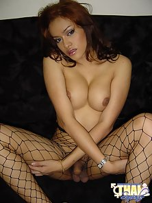 Hawaiian Ladyboy shows nice cock through fishnet